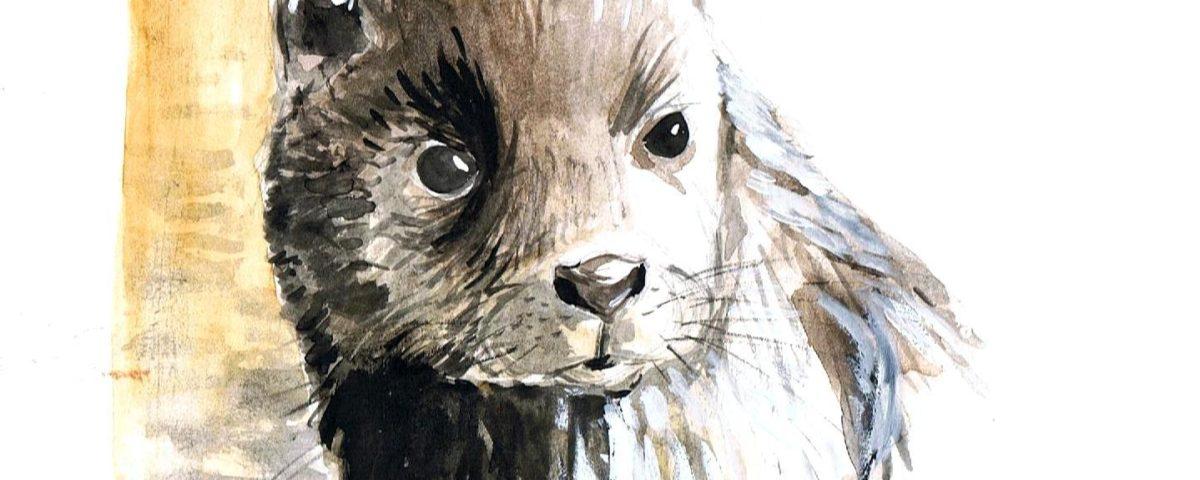 lontra
